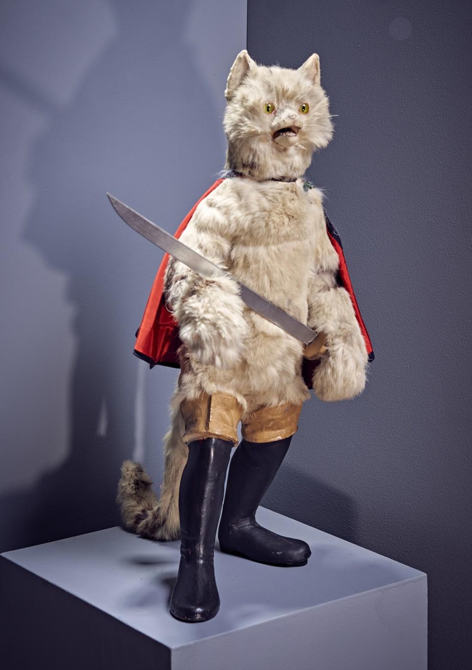 Cat EM